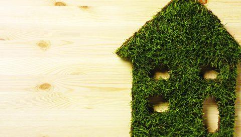 L'entretien écologique de notre maison