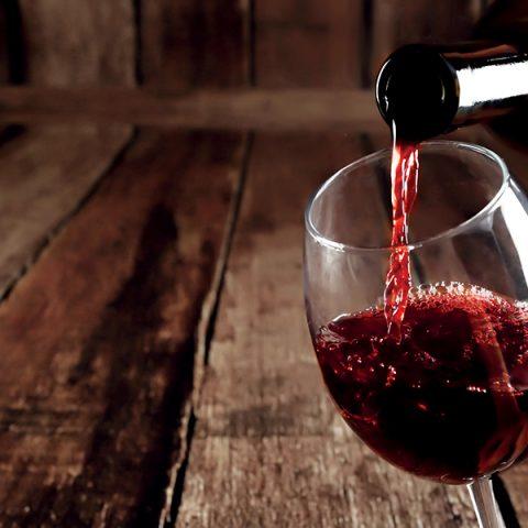 Les vins bio, une histoire de passion !