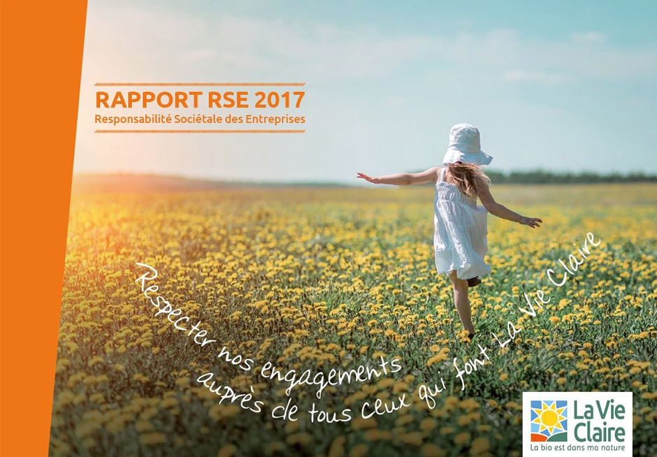 Rapport RSE 2017