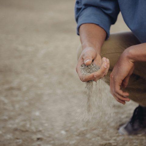 Peut-on éviter le glyphosate ?
