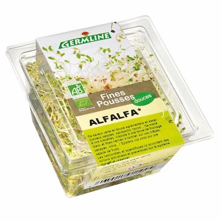 Graines germées d'Alfalfa bio