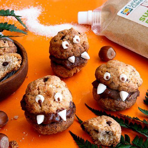 Cookies monstrueux aux pépites de chocolat 1