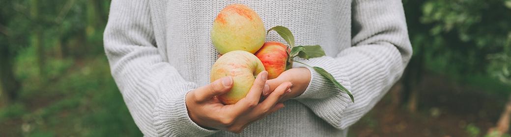 Manger bio : atout santé et art de vivre
