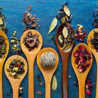 Cuisine bio et recettes bio 1