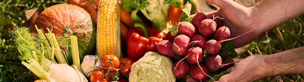 Comment avoir une alimentation saine ? 1