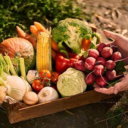 Comment avoir une alimentation saine ? 3