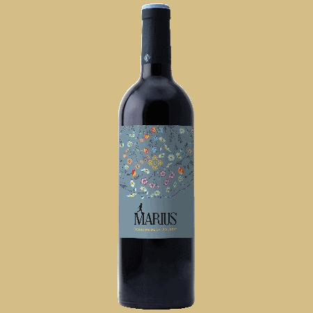Marius - Vin rouge AOP bio