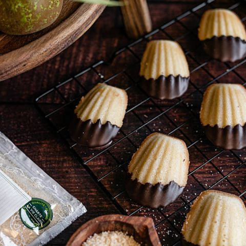 Madeleines enrobées de chocolat 1