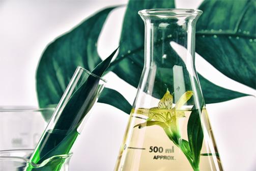 Guide pratique pour choisir son huile végétale 11