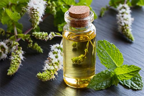 Guide pratique pour choisir son huile végétale 10